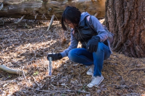 Students from Flowing Wells Jr High attending UA Science Sky School don't just make anecdotal observations: they take measurements in a variety of environments (leaf litter in burned and unburned sites).