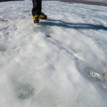 Frozen lids over Antarctic cryoconite holes