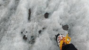 Alpine glacier cryoconite holes